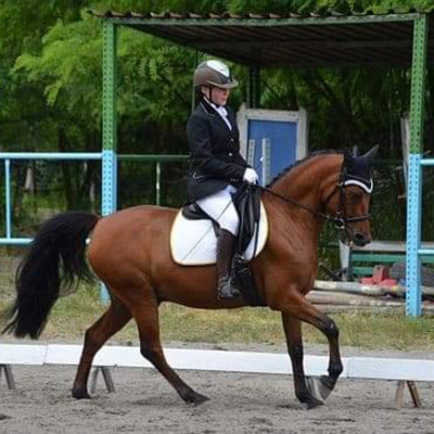 Marysia and online dressage