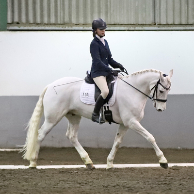 Horse and rider dressage test