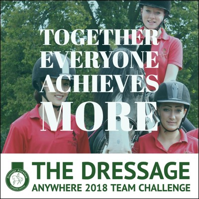 Online Dressage Team Challege