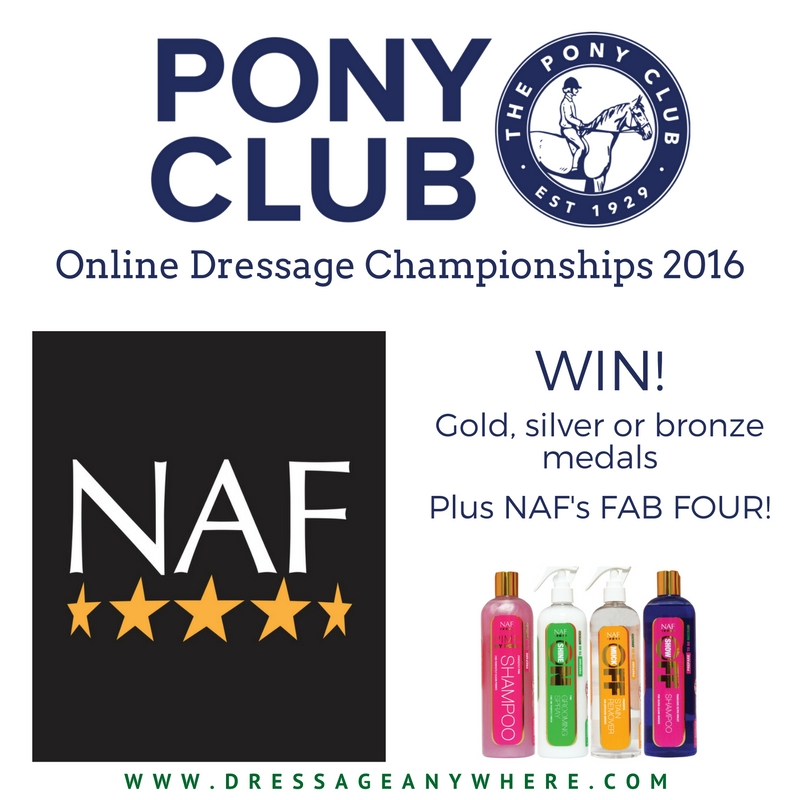 The Pony Club prizes